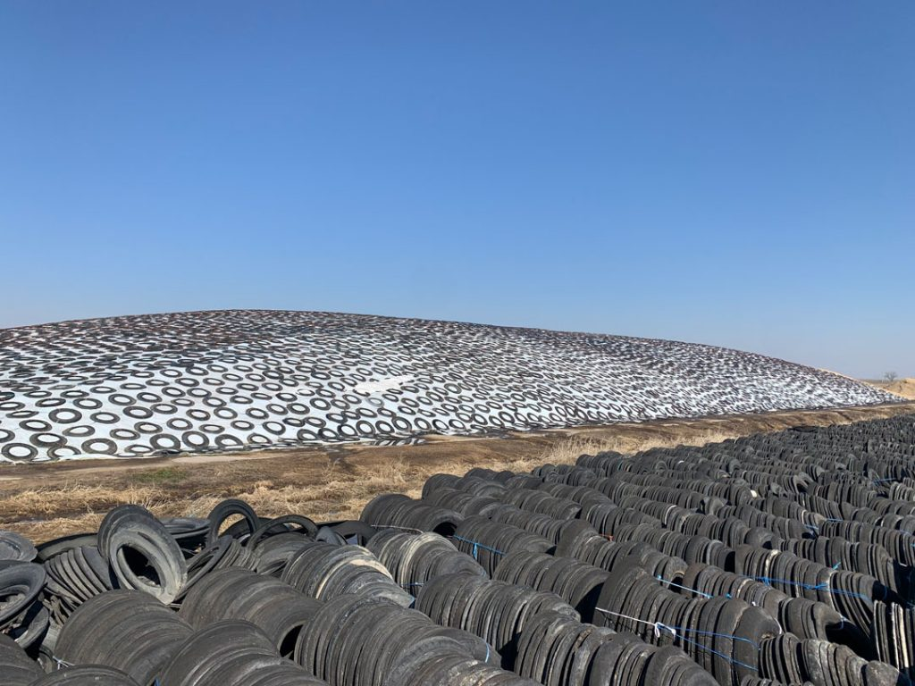 Sidewalls from end-of-life tires are used to hold down covers on livestock feed piles.